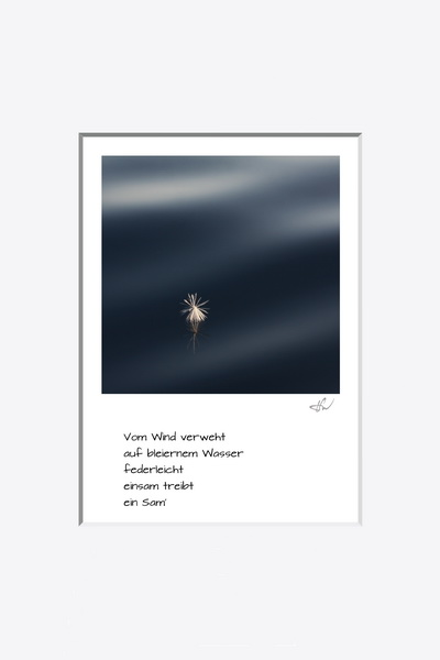 haiku_1008-1434