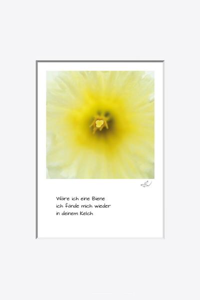 haiku_1604-0851