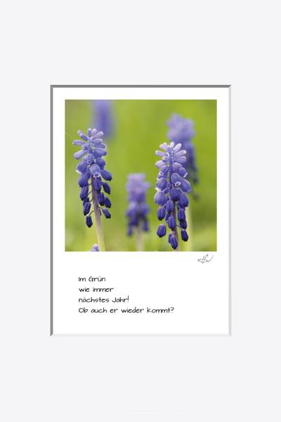 haiku_1604-1363