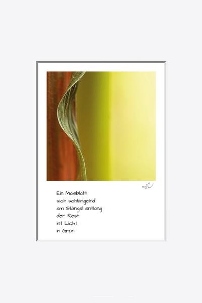 haiku_1609-2892