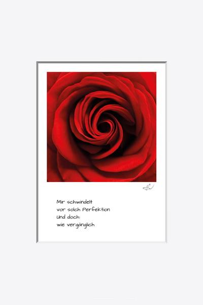 haiku_1904-1109