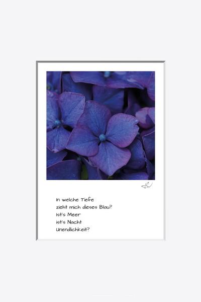 haiku_1907-8958