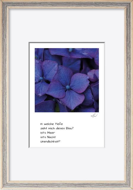 haiku_1907-8958_mR